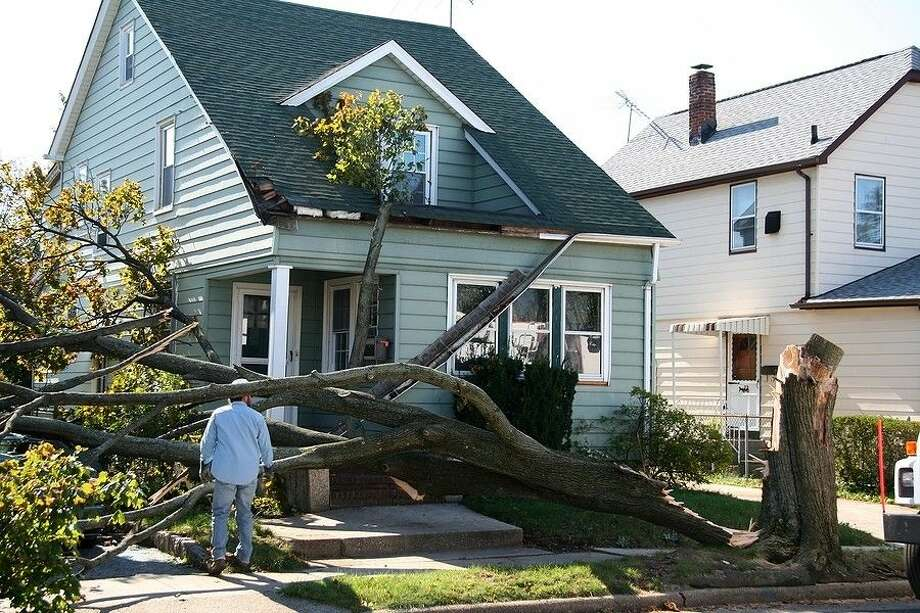 The Tree Care Industry Association recommends calling a professional arborist to handle dangerous tree work.