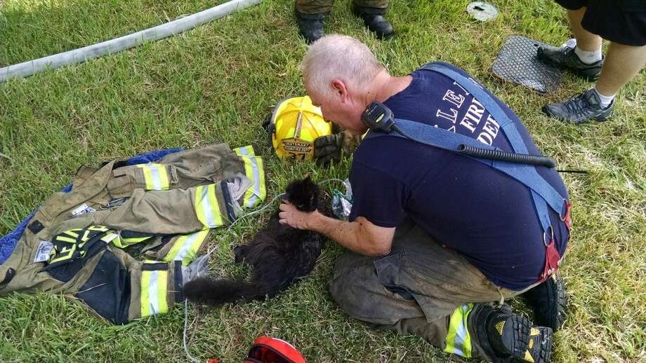 Klein Fireman pullls a cat from the burning house and revived it with oxygen. Photo: Submitted Photo