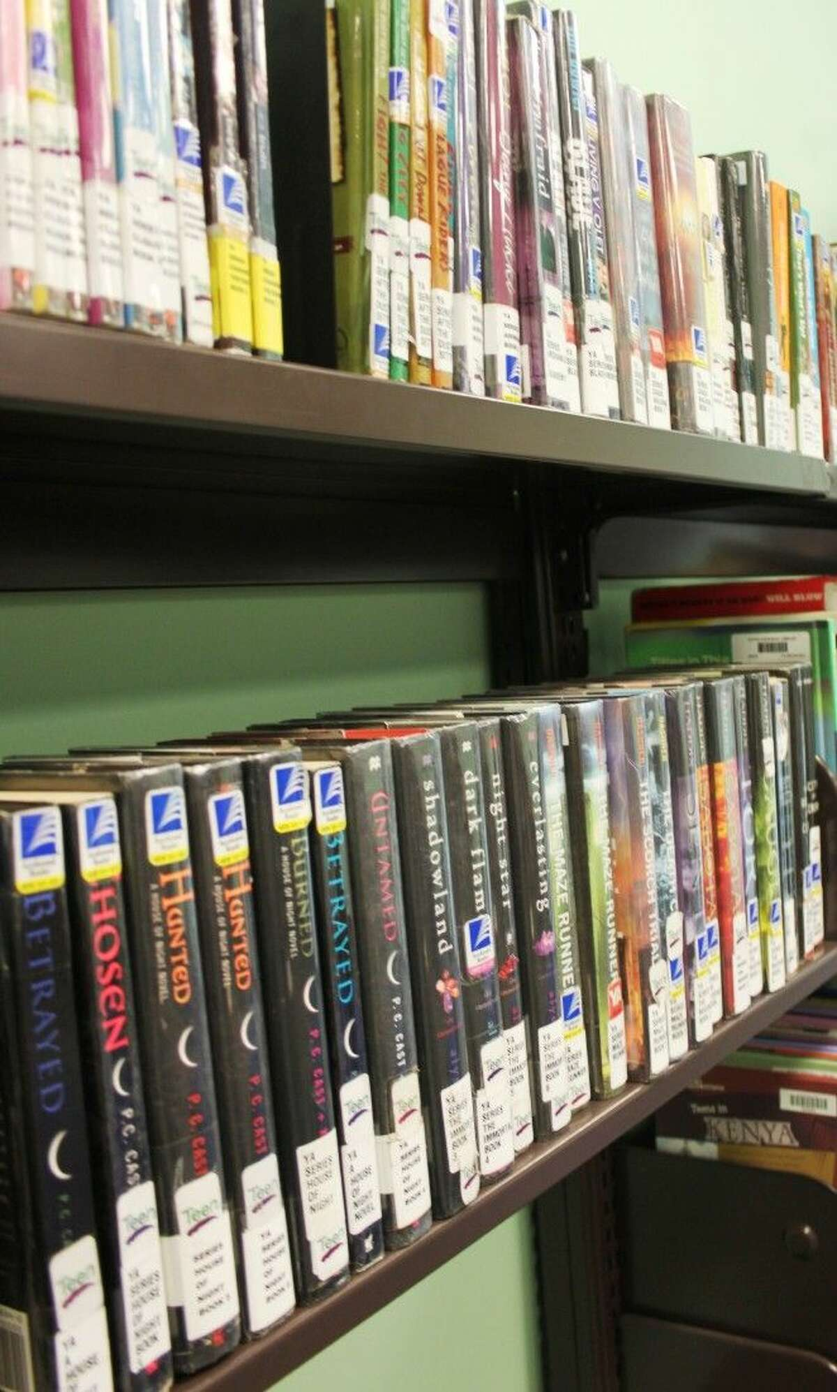 Books that deal in occult or have vampire characters are being questioned by Shepherd minister, Phillip Missick, who is circulating a petition to have certain books removed from the teen section at Austin Memorial Library in Cleveland.