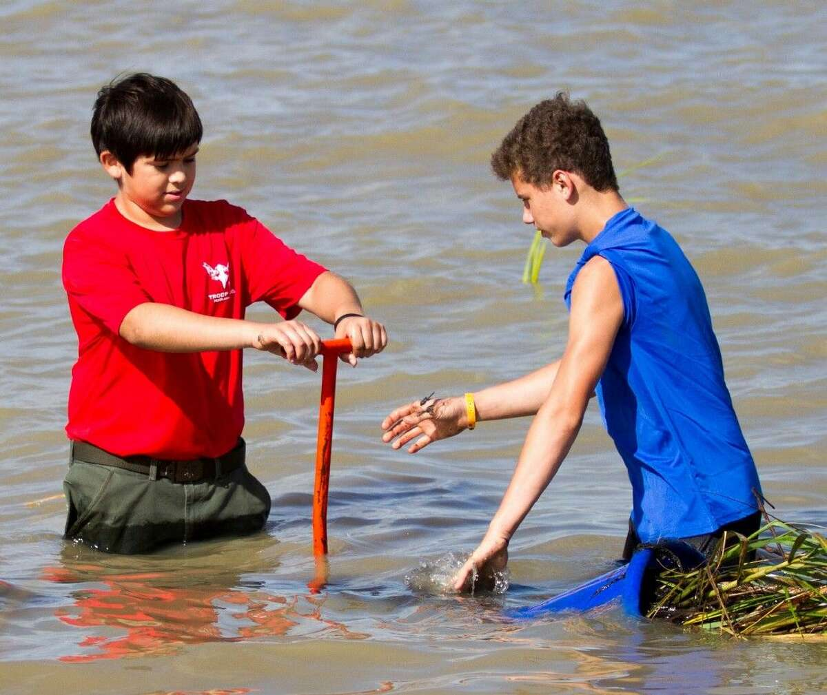 Ryan Rinhart (right) helps restore shoreline by planting marsh grass at a Galveston Bay Foundation marsh restoration event. Ryan will assist GBF on a habitat restoration project in Smith Point on Saturday, August 1, to support his goal of achieving an Eagle Scout Award.