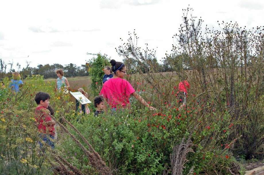 Participants join in Prairie Heritage Day for a past Prairie Month event. This year's Heritage Day is Nov. 1 at Seabourne Creek Park in Rosenberg. Photo: Submitted Photo
