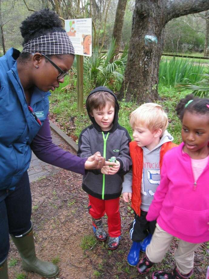 Building on the EcoTots program is EcoKids for 3-6 year olds. This is a drop off class from 9:30-11:30 a.m. each Wednesday and Friday with a different nature topic each session.