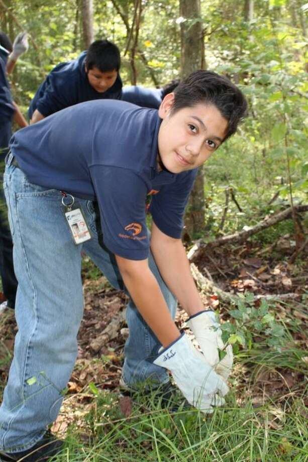 Every year students from YES Prep Academy dedicate time to maintain their trail by removing invasive, non-native plants.