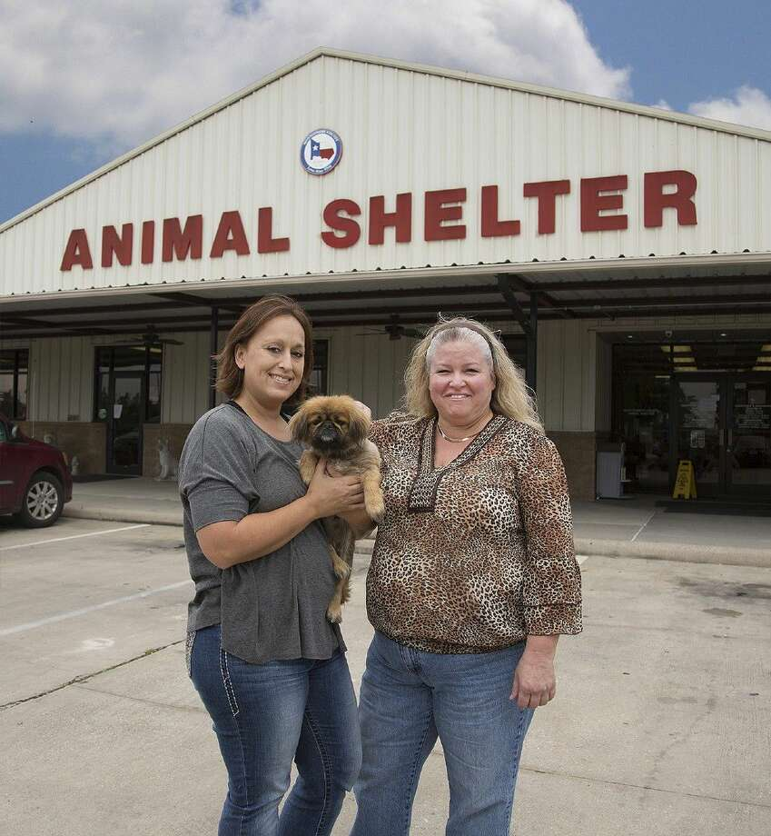Rescue coordinator Tammy Richey, left, and foster coordinator Tracy Strain are helping save cats and dogs in Montgomery County. Photo: Submitted