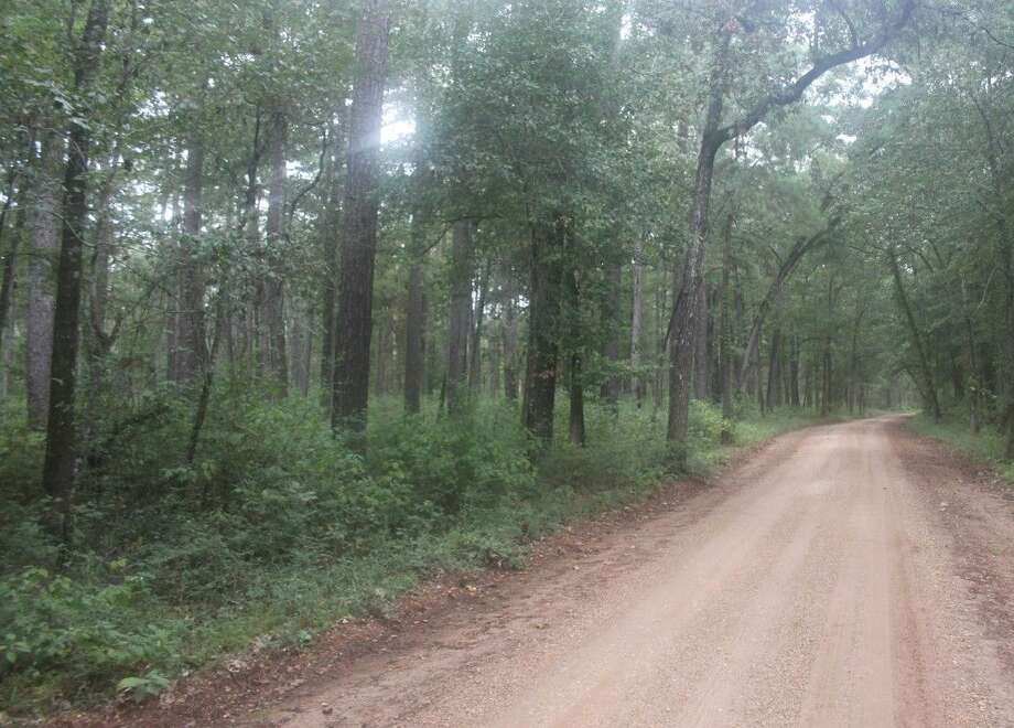 Camp Strake is set to be relocated in Evergreen off of Hines Lake Rd. Photo: Jacob McAdams