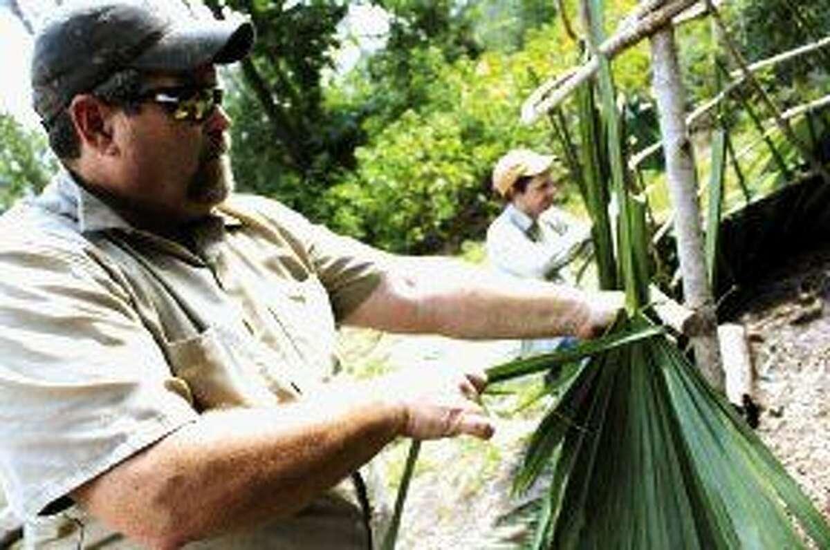 Jones Park Education Coordinator Monte Parks ties palmetto fronds to the hut.