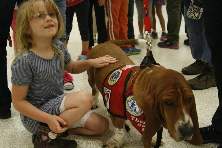 Basset Hound Sammie, a rescue dog, spends time with his owner's granddaughter during the Dogs of Character presentation on Wednesday, Oct. 15, 2014.