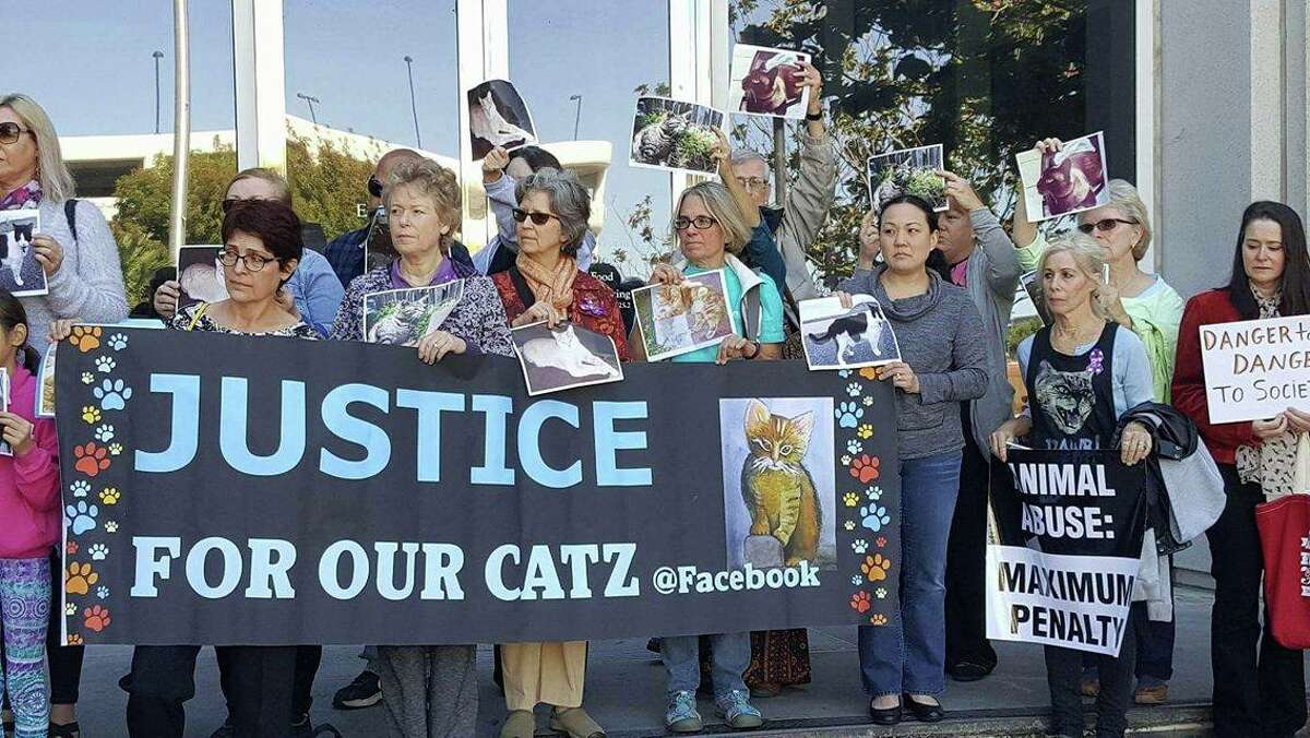 Dozens demonstrated outside a Santa Clara County courthouse Tuesday to demand a maximum sentence for a California man accused of killing more than 20 cats.