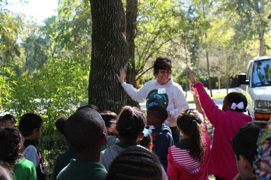 Jones Park volunteer Mary Jo Chapman answers questions about the park's green ash tree, a species widely used to make baseball bats, furniture and woven baskets. Photo: Submitted Photo