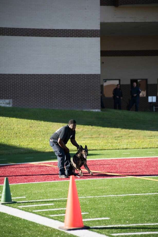 Tyler, a 2 year-old German Shepherd, placed second in the K9's 4 Cops, Harris County Sheriff's Office K9 Officer Olympics at the HCSO training facility in Humble recently. Photo: HCC