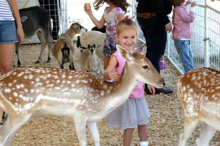 The Fort Bend County Fair in Rosenberg offered fun such as a petting zoo for attendees of all ages. Here, a young girl gleefully pets a deer in the petting zoo and was photo-bombed by a baby goat. Photo: Craig Moseley