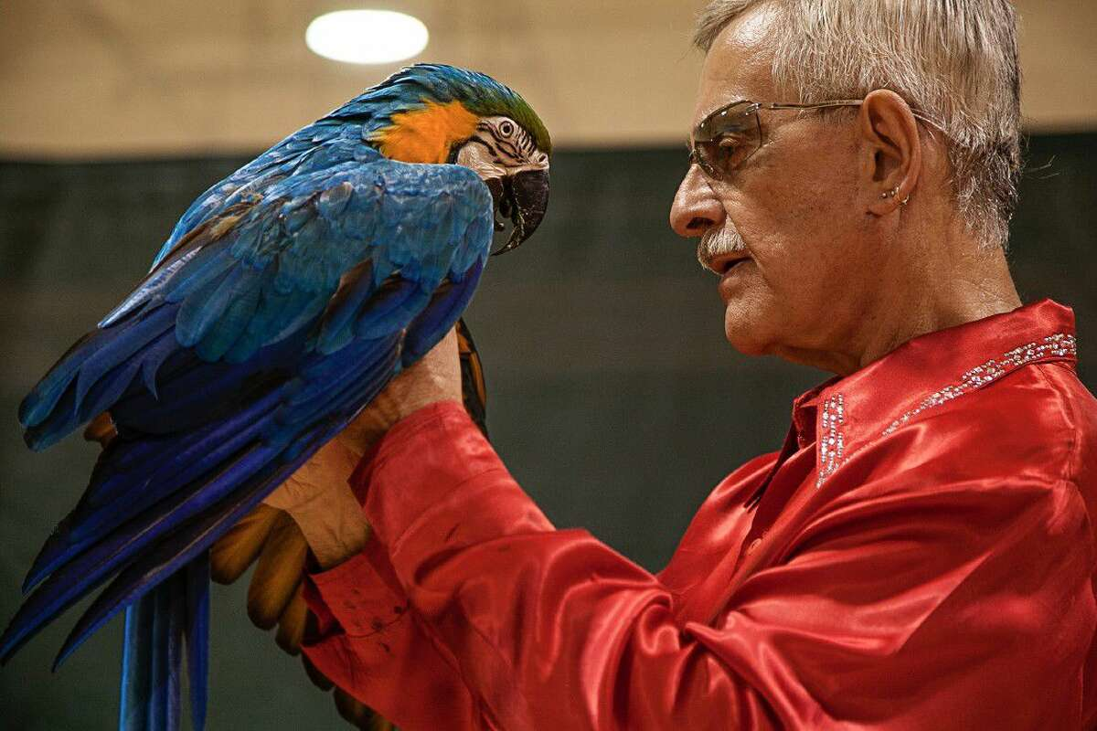 Join The Woodlands Children's Museum on Thursday, June 23, for exotic bird entertainment and education from Sonny