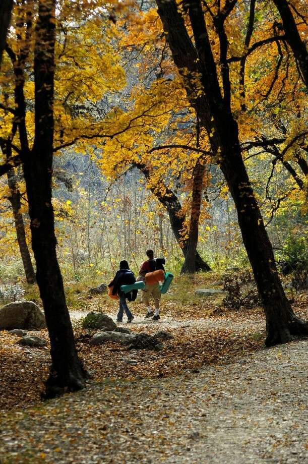 Lost Maples State Natural Area is among the Texas State Parks where fall is in its full splendor. Photo: Lost Mapels State Natural Area