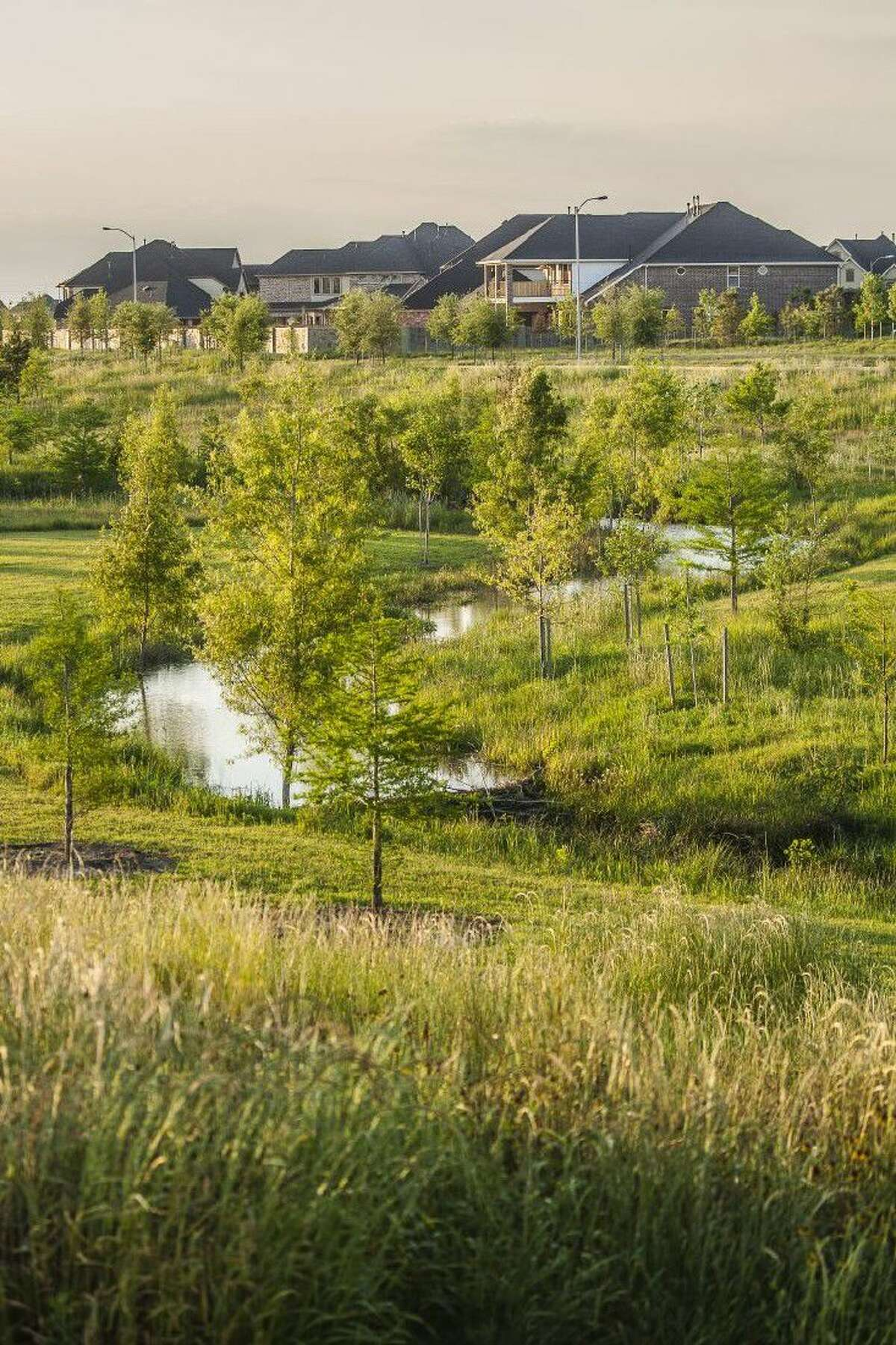 Cross Creek Ranch has been named a winner in the 2016 Arbor Awards, presented by Trees for Houston, a 30-year-old organization that has planted nearly half a million trees throughout Houston.