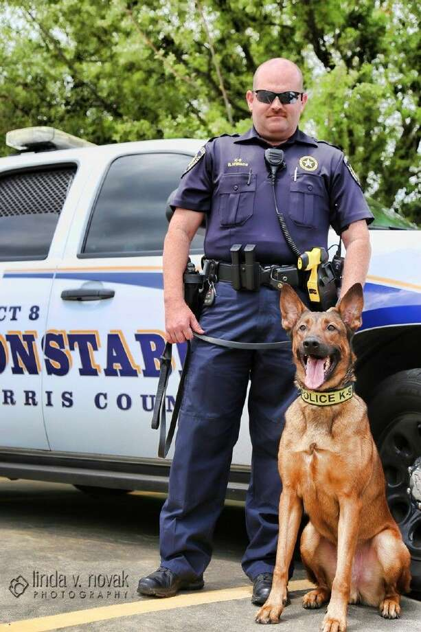 The Precinct 8 Constable's Office's K9 unit took a first place honor at a recent conference and trial. Deputy Billy Williams and his K9 partner Storm were named best in narcotics detection at the 2015 Texas K9 Officer Conference and Trials in October.