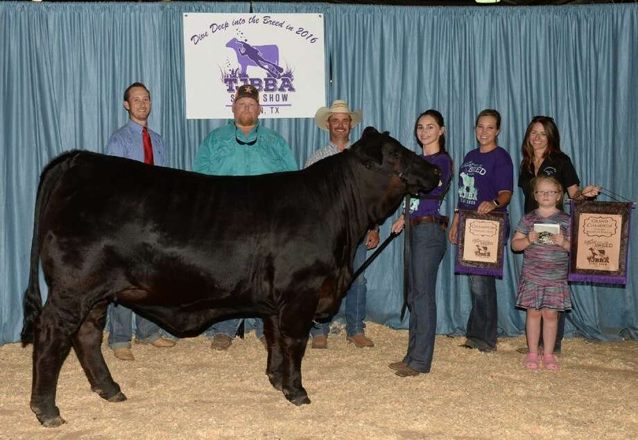 Gracie Kempken, a member of the Friendswood FFA Show Cattle Team, recently attended the Texas Junior Brangus Breeders Association State Show in Bryan.
