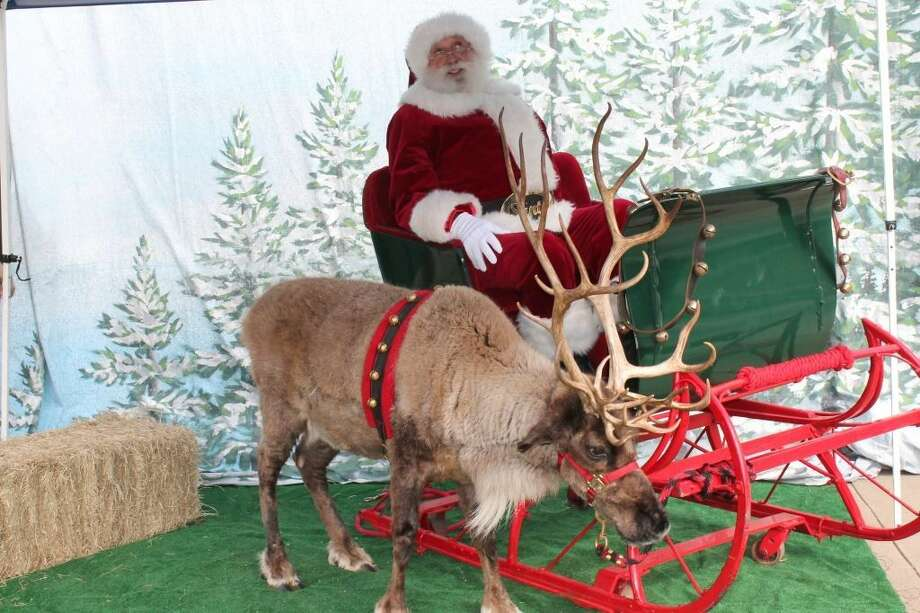 One of Santa's reindeer has taken a wild turn to the Children's Museum of Houston before his big journey around the world.