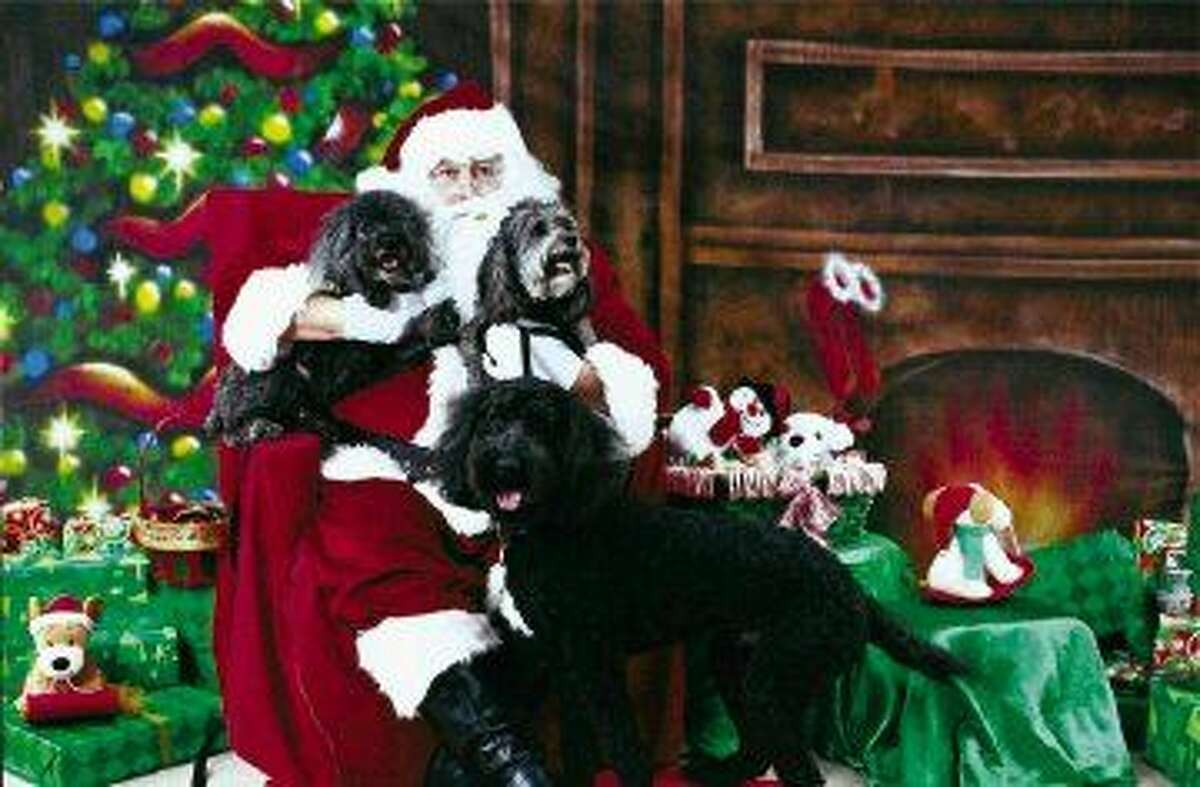 At Christmas in the Park at Kingwood Town Center on Saturday, Dec. 5, from 10 a.m. - 5 p.m., Blue Pond Pet Photography, Personal Touch Pet Sitting and the Town Center Events Committee, will sponsor photos with Santa.