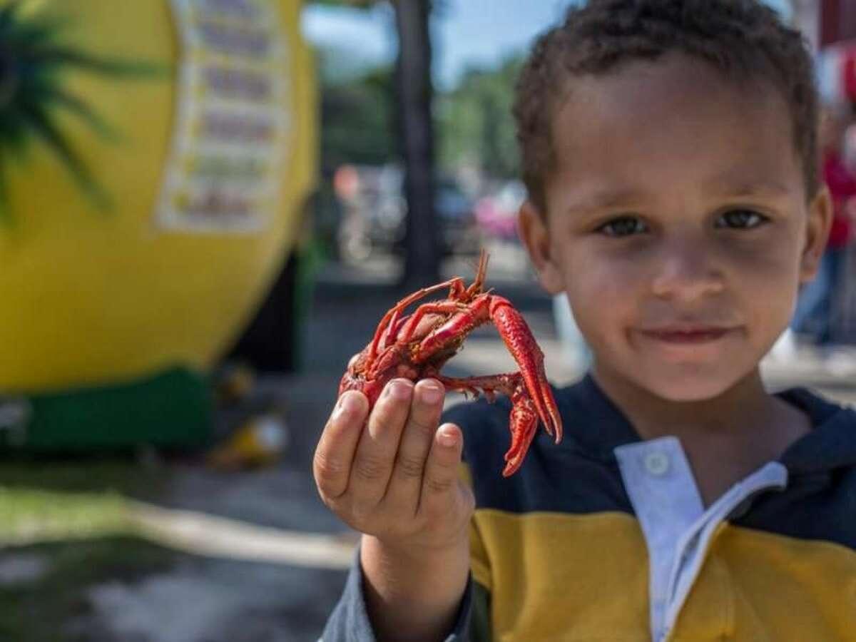 Texas Crawfish and Music Festival