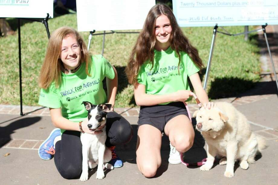 Schuyler Adrogué Gustafson (L) and Ella Rose Arnold sit with two of their dogs at the iWalk event on Nov. 9. The girls organized a neighborhood walk and raised over $22,500 for the Houston SPCA.