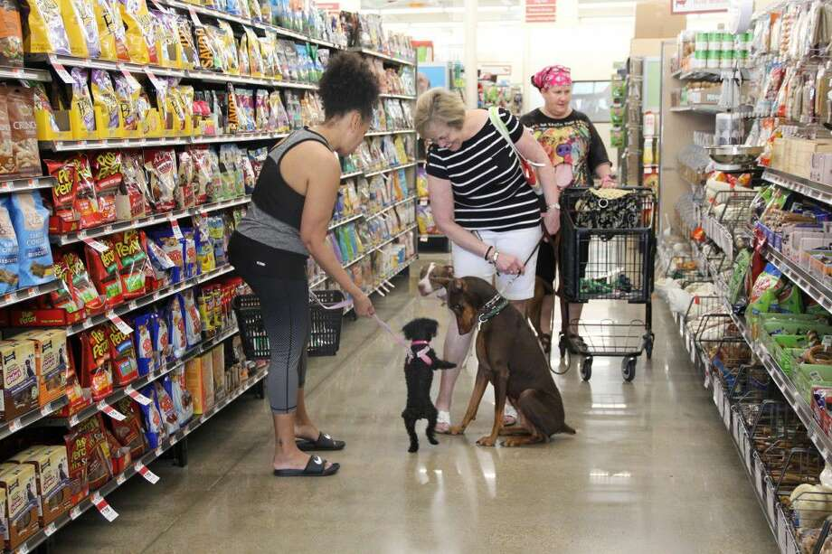 Pet owners enjoy the grand opening at the Cypress area Pet Supplies Plus on Saturday, July 9. The grand opening events lasted the entire weekend and was filled with prizes and treats.