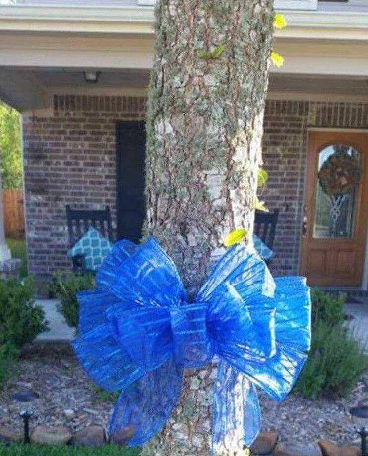 To show support for law enforcement, Kingwood resident Amanda Kramer created blue ribbon bows to adorn the trees outside of her home and neighbor's trees along the roadway.