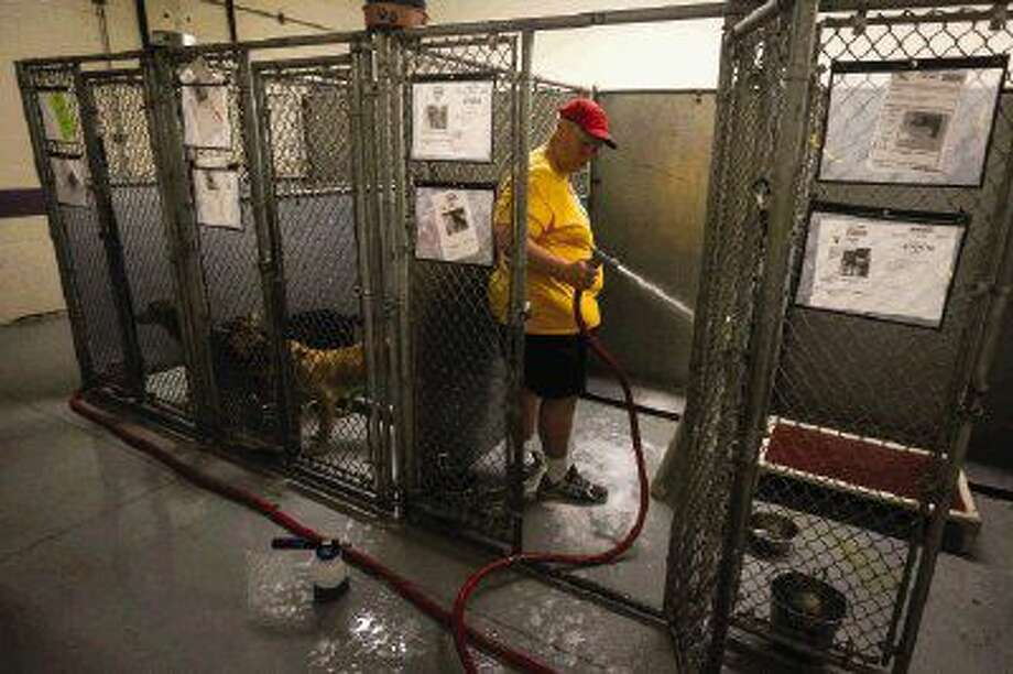 Attorney Eric Yollick cleans out a kennel Friday at the Montgomery County Animal Shelter. Yollick volunteered to clean kennels following a confrontation with shelter Director Dr. Todd Hayden regarding the shelter's $3.4 million budget for 2016-17. Photo: Michael Minasi