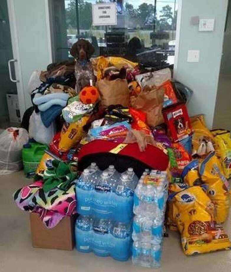 Donation items were collected at Barkway Pet Resorts for pets displaced by flooding in south Louisiana.
