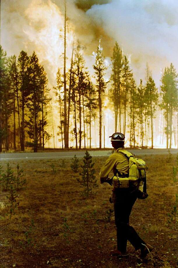 In this Aug. 24, 1988, file photo, Larry Walters, a U.S. Forest Service firefighter from Higgins, Miss., watches the North Fork fire burn in the Yellowstone National Forest. Fire managers in Yellowstone National Park are curious to find out why wildfires are burning so actively in the summer of 2016, in areas that burned back in 1988. The park has called in a special federal team that studies fire behavior to look at why the fires are burning so well.