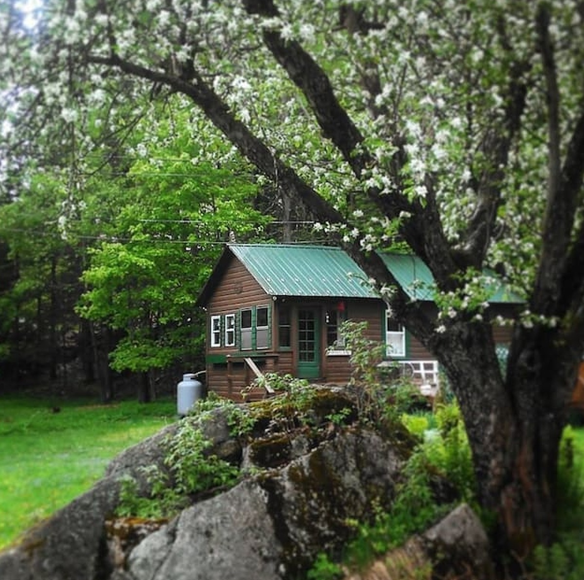 Saranac Lake, NY . Canary Cabin. Price: $125. Quaint, one bedroom cabin with a queen bed, bathroom, living room, kitchenette, and outdoor hot tub. Just a minutes walk to lower Saranac Lake and Dewey Mountain!View full listing on Airbnb.