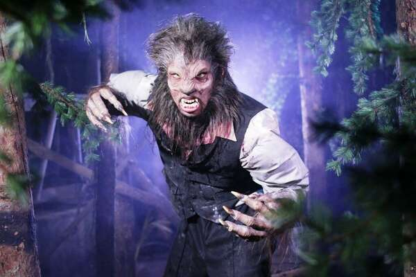 This werewolf from the Feral Moon attraction at the 13th Floor Haunted House.