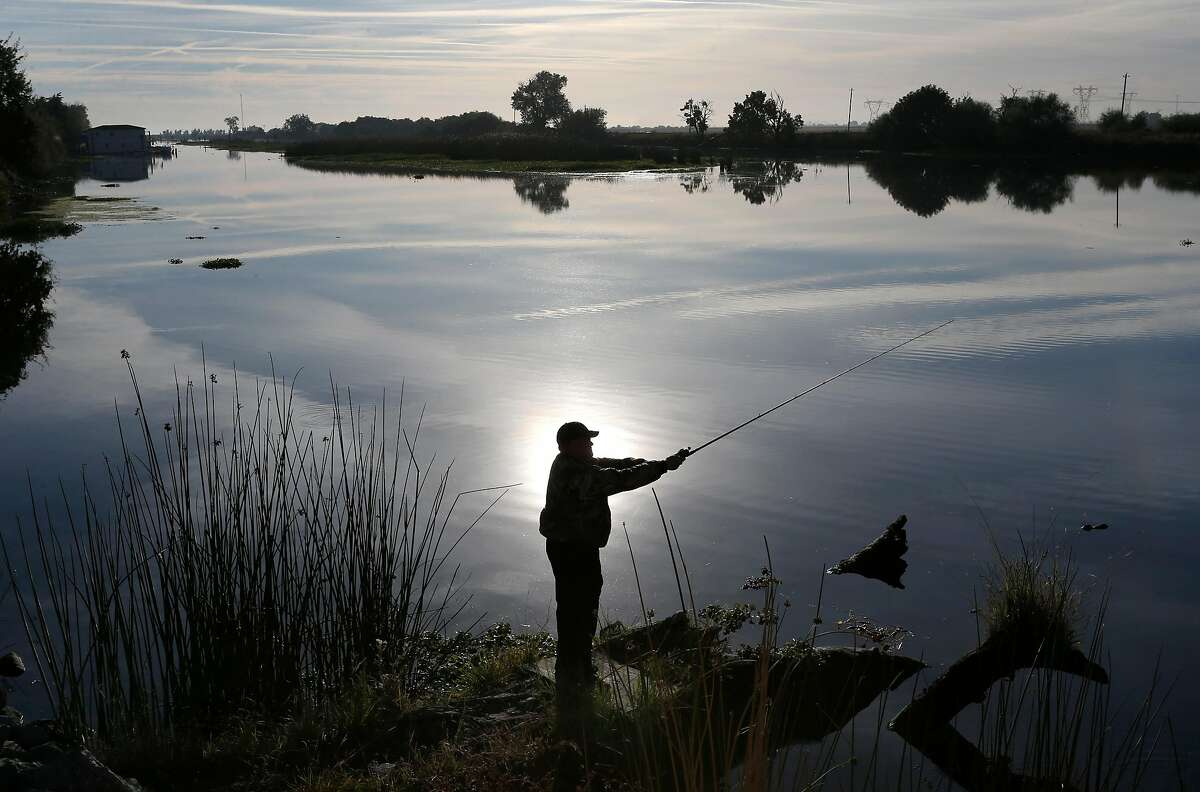 Brian McDevitt casts a fishing line in Rock Slough at Holland Tract and Delta roads in Brentwood, Calif. on Friday, Oct. 7, 2016. A study released by the Bay Institute shows a dramatic decrease in river water levels flowing into the bay delta.