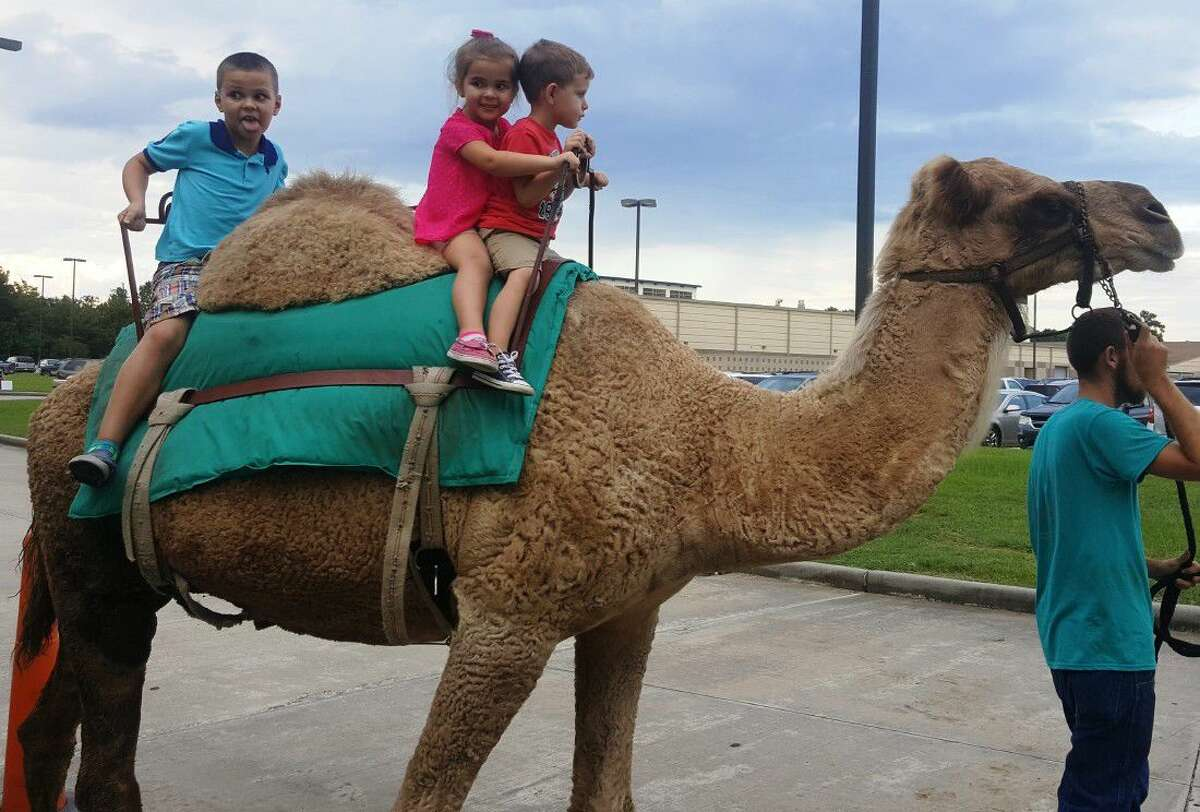 Siblings ride Larry the camel during the annual Back to School Bash hosted by EMCID at the EMCID Complex Tuesday, Sept. 13.