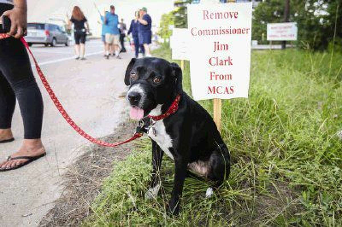Ophelia, a foster dog from another animal shelter, sits in front of a protest sign on Sunday at the Montgomery County Animal Shelter.