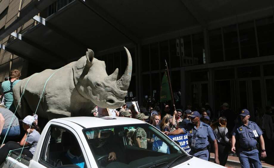 Activists march past the Convention on International Trade in Endangered Species of Wild Fauna and Flora, (CITES) in Sandton, Johannesburg, Saturday.