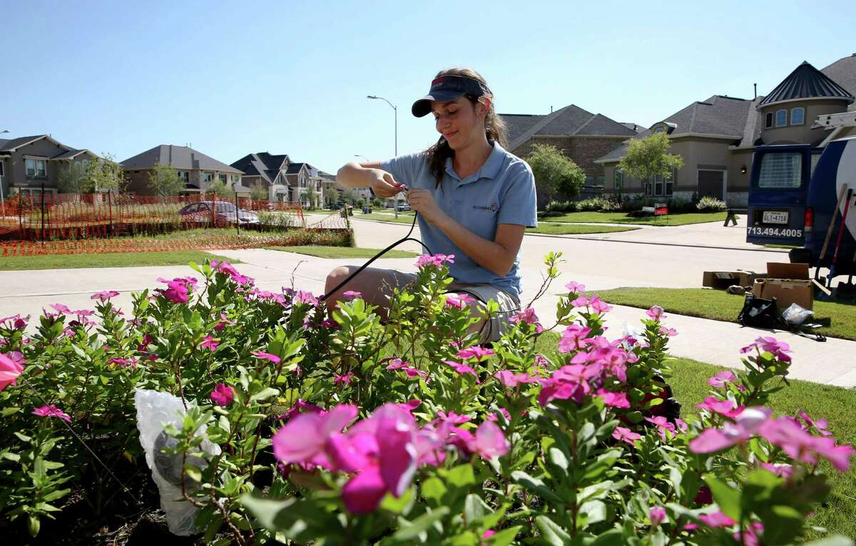 Mariya Kostova works on wiring a spotlight for a client's flower bed in Fulshear. Kostova started her outdoor lighting company in 2012 and left her oil industry corporate job in the fall of 2015.