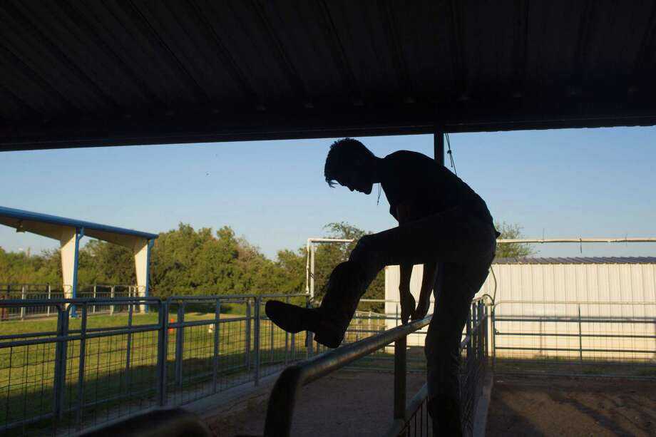 Somerset, Texas -- October 5, 2016 -- Roman Longoria hops over the fence while tending to his pigs at the Somerset ISD FFA barn. Ray Whitehouse / for the San Antonio Express-News Photo: Ray Whitehouse, Photographer / For The San Antonio Express-News