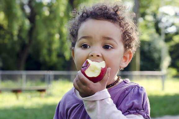 Child child eating an apple in a park in nature.
