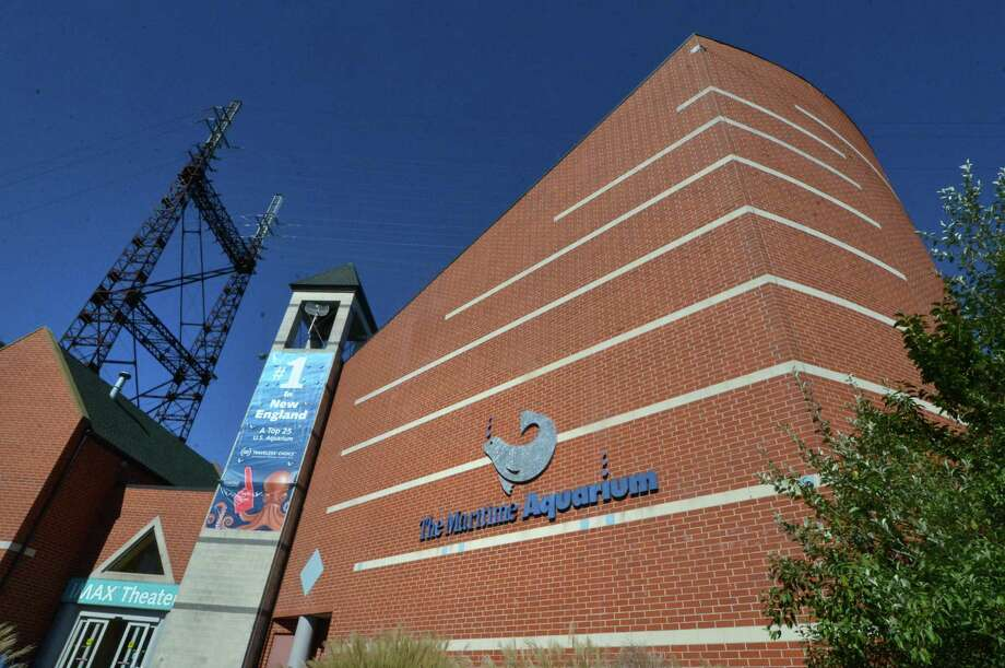 The IMAX Theater at The Maritime Aquarium on Monday October 10, 2016 in Norwalk Conn. Photo: Alex Von Kleydorff / Hearst Connecticut Media / Connecticut Post