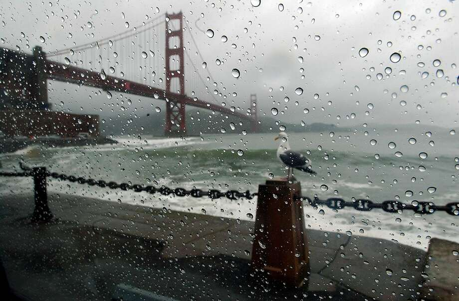 The Golden Gate Bridge and a seagull are seen through a car window on a rainy day in San Francisco, Wednesday, Feb. 25, 2004. A powerful winter storm swept through Northern California on Wednesday morning, flooding streets, clogging traffic and leaving tens of thousands of people without power. (AP Photo/Marcio Jose Sanchez) Photo: Marcio Jose Sanchez