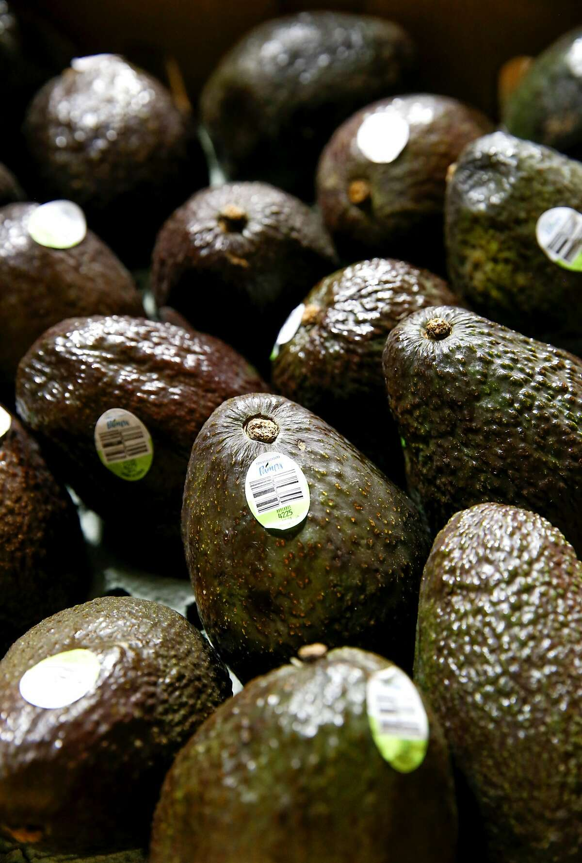 Boxes of avocados inside the distribution warehouse at Pacific Produce in South San Francisco on Wednesday October, 12 2016.