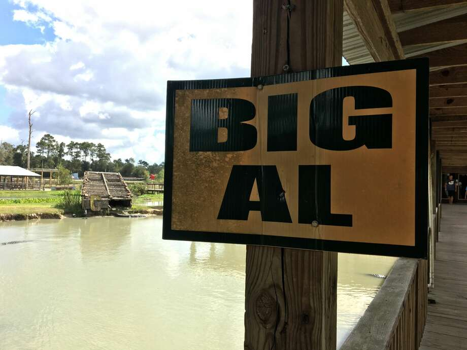"Big Tex""...we always say, 'Everything's bigger in Texas,'"" Jolene B. said.  Photo: Sara E. Flores / The Enterprise"