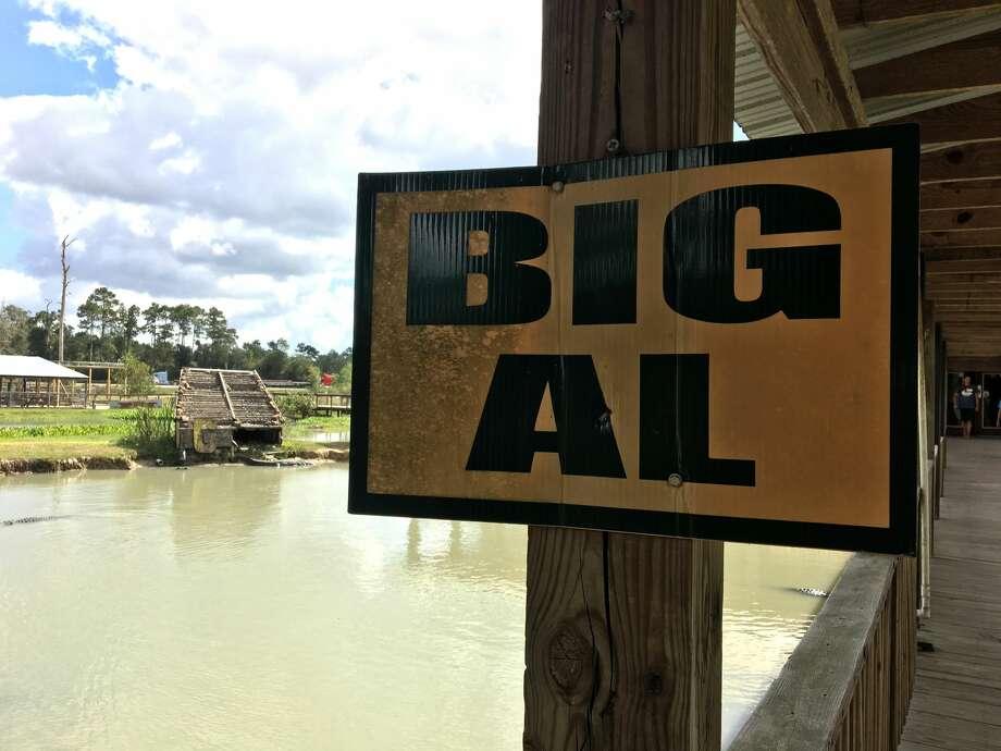"Big Tex""...we always say, 'Everything's bigger in Texas,'"" Jolene B. said. Photo: Sara E. Flores / The Enterprise"