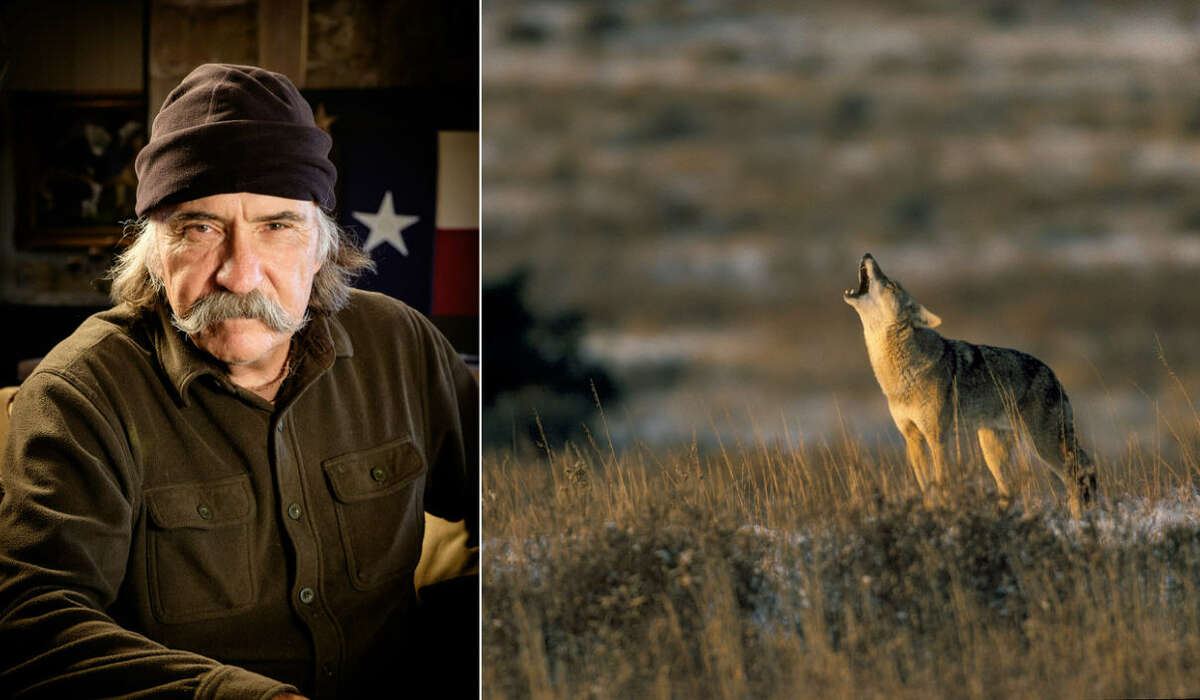 Meet Wyman Meinzer, the official State Photographer of Texas. For over 37 years, he has captured the beauty of Texas landscapes, wildlife and culture. Continue clicking to see 40 of Meinzer's favorite photos he's captured over the years.