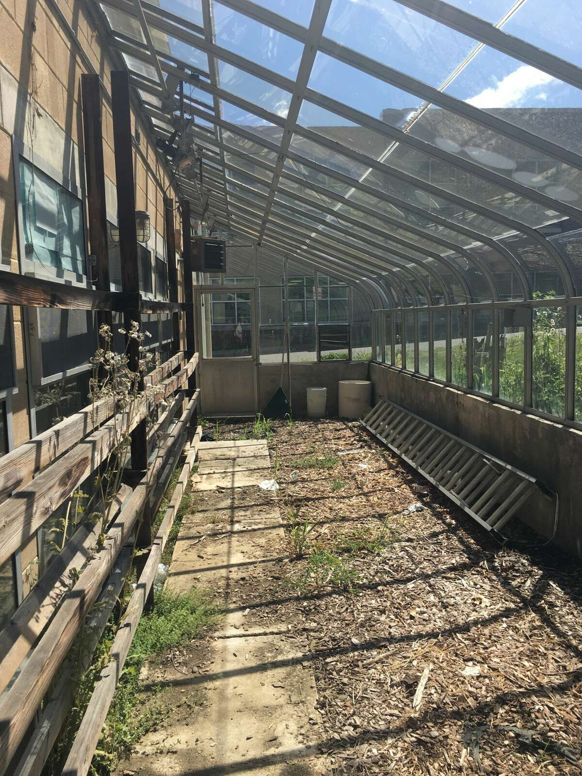 The greenhouse at Westhill High School as it currently sits. WHS graduate Nancy Juarez is trying to revitalize the greenhouse into an extension of the campus' community garden she and other students built.