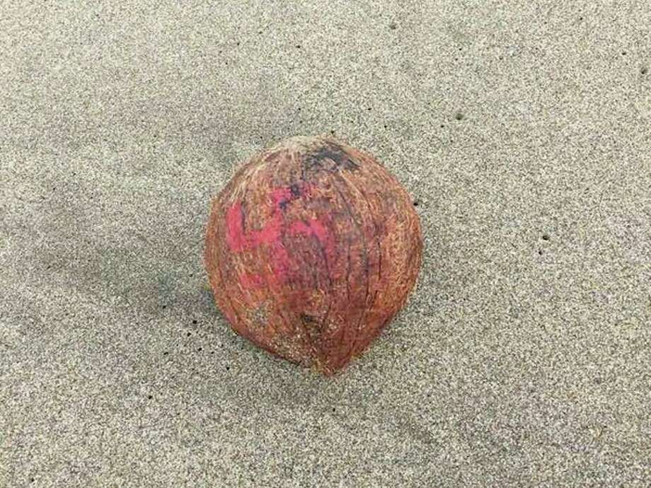 Several coconuts with red swastikas were washed up on Ocean Beach. Photo: Courtesy Eileen W./Hoodline