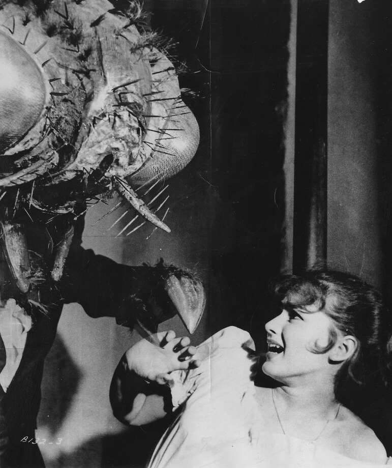 """The 1958 version of """"The Fly."""""""