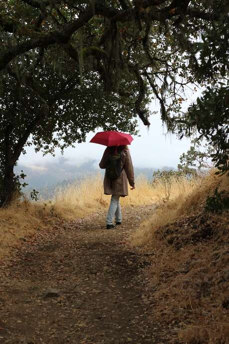 Going up the Oat Hill Mine Trail in Calistoga is the easiest way to get sweeping views of the Napa Valley. Photo: Spud Hilton, The Chronicle