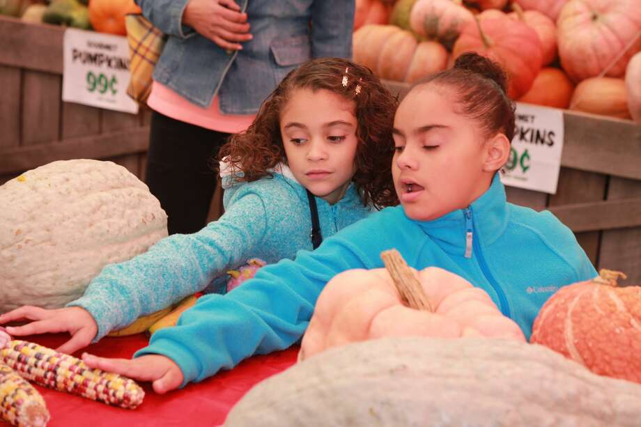 Stew  Leonard's in Norwalk held a pumpkin carving demonstration andHalloween  Hayride Spooktacular at its store on October 15, 2106. Families enjoyed 10-minute hayrides and Halloween activities. Were you SEEN? Photo: Derek Sterling/Hearst CT Media
