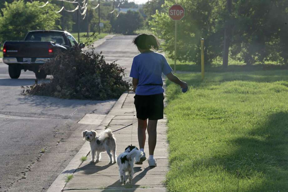 Kim Ramirez walks with her two terriers, Yucca and Brooks Dale, near the Salado Creek Greenway, where she found them wandering two years ago and adopted them. Ramirez said people regularly dump animals in the area and that there have been times when loose dogs have attacked pets  in the neighborhood. Photo: Edward A. Ornelas / San Antonio Express-News / © 2016 San Antonio Express-News